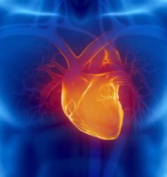 метод для восстановления сердца